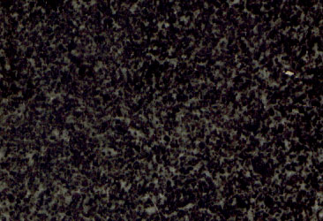 38 Confetti Black Granite Sample